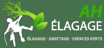 https://ah-elagage.fr/wp-content/uploads/2020/12/logo-ah-elagage-elagueur-medoc-footer.png